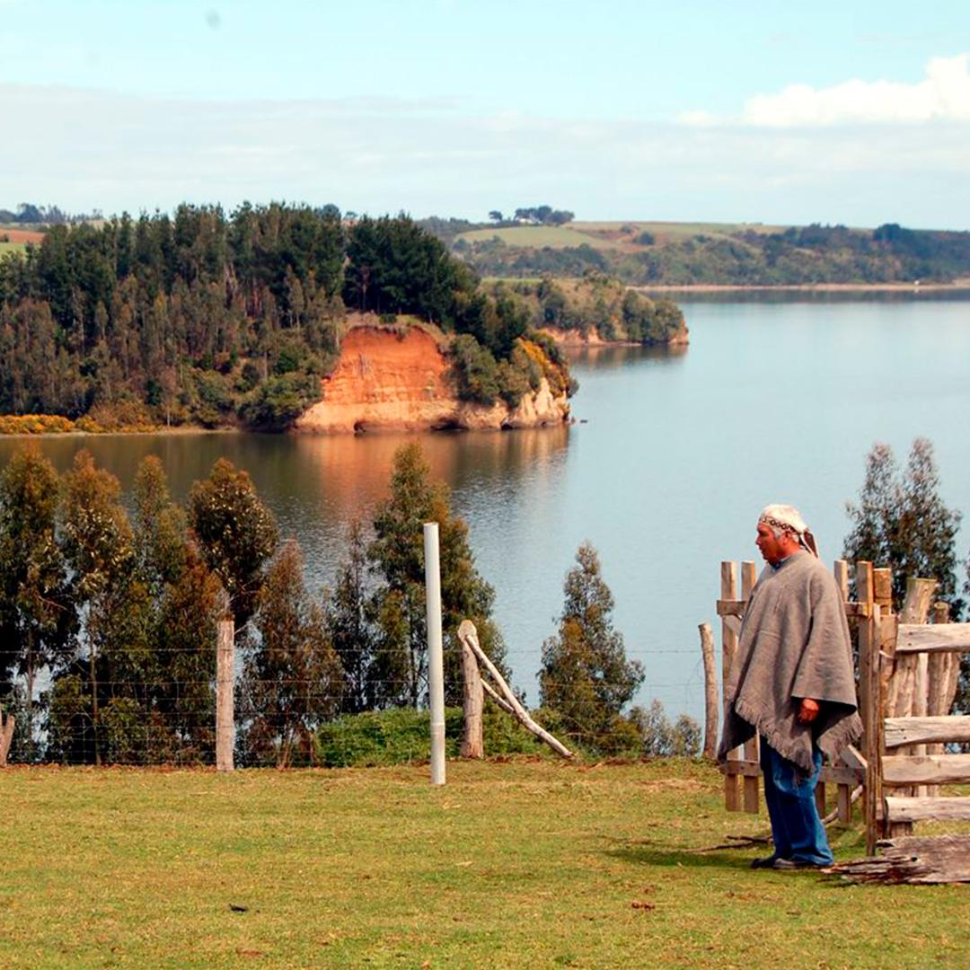 fotografía del lago budi de fondo