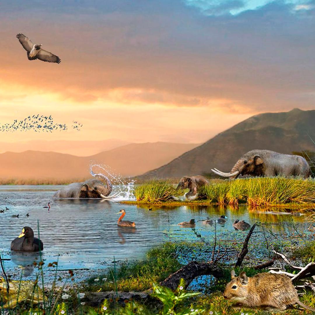 imagen animales prehistoricos conviviendo mismo habitat
