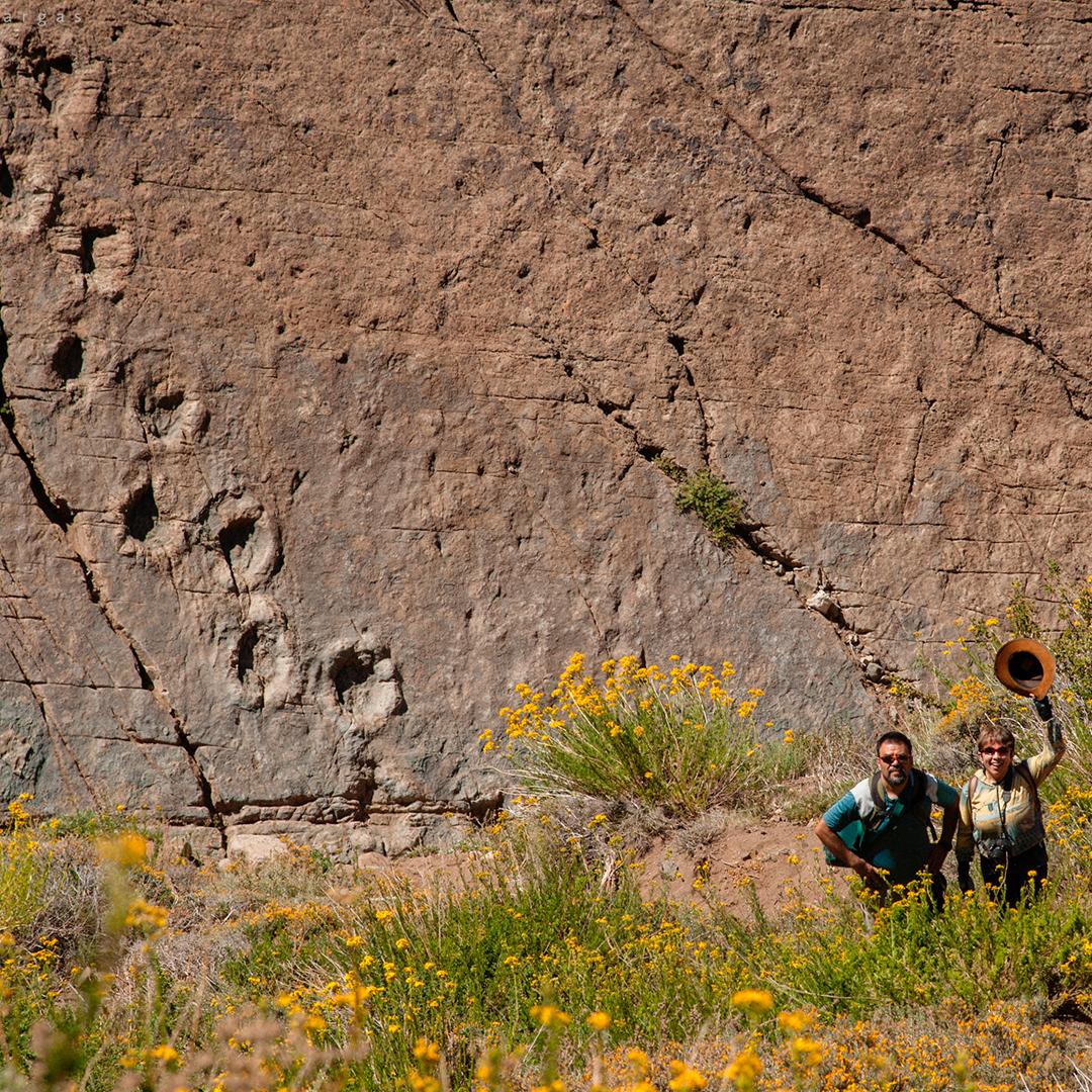 Dos personas viendo las huellas de dinosaurios