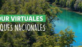 Tour Virtual: Parque Nacional Chiloé