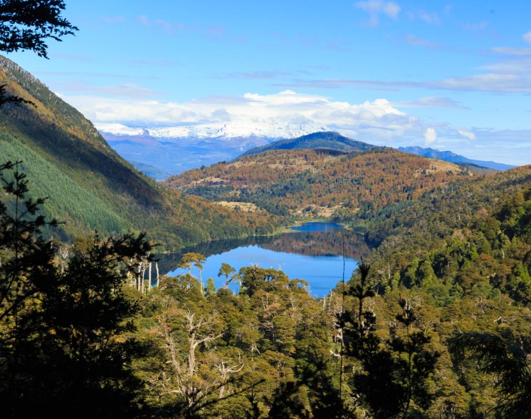 fotografía en altura del parque nacional y laguna parques nacionales