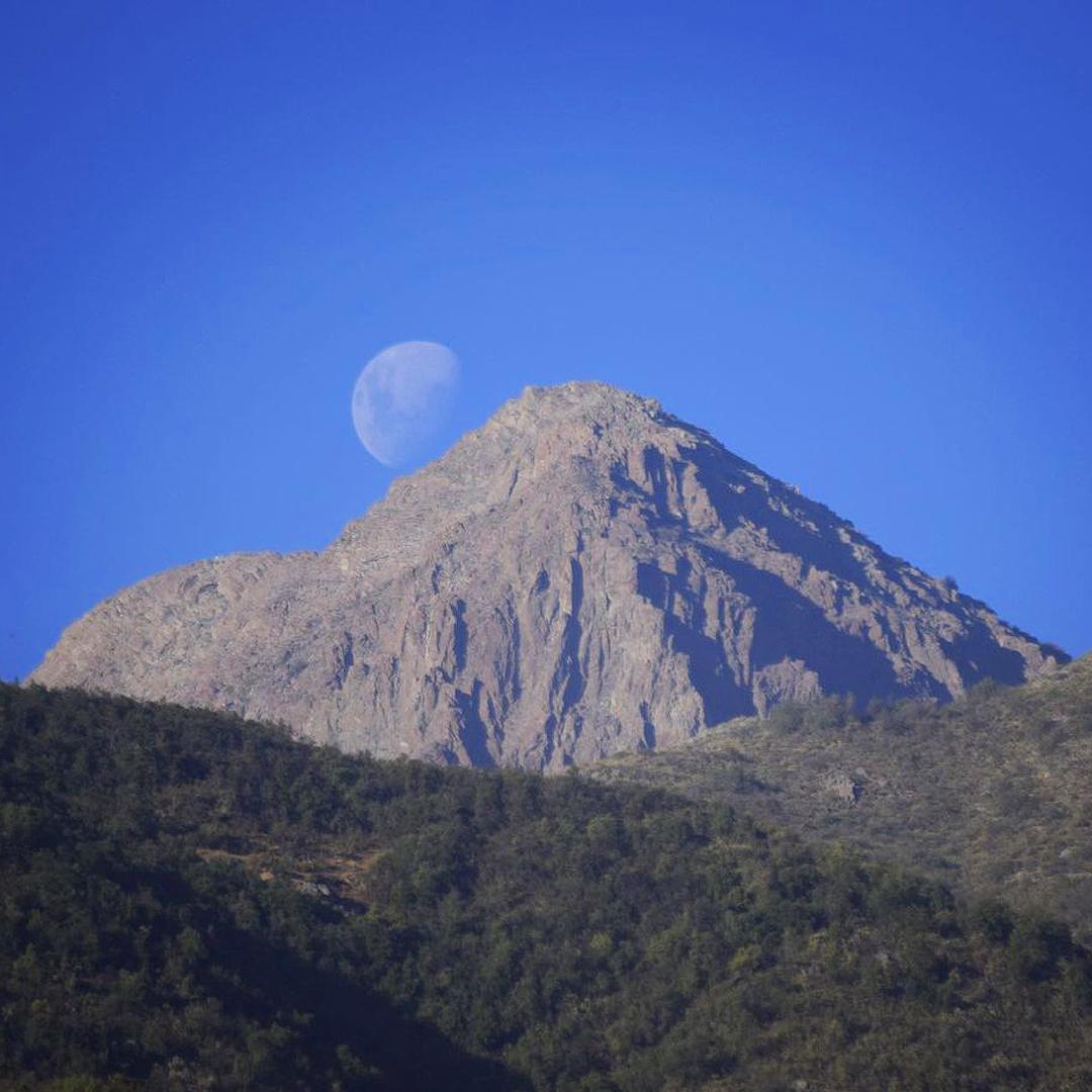 fotografía del parque junto a la luna paisaje de dia