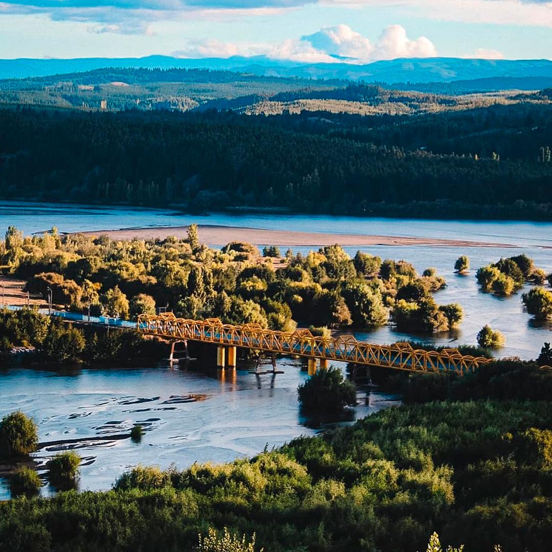 fotografía panorámica del puente