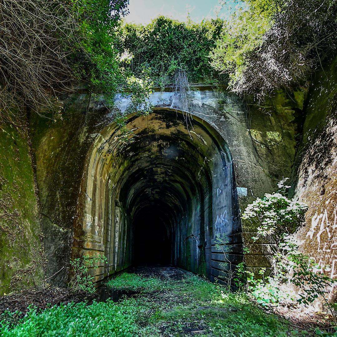 fotografía túnel de nahuelbuta