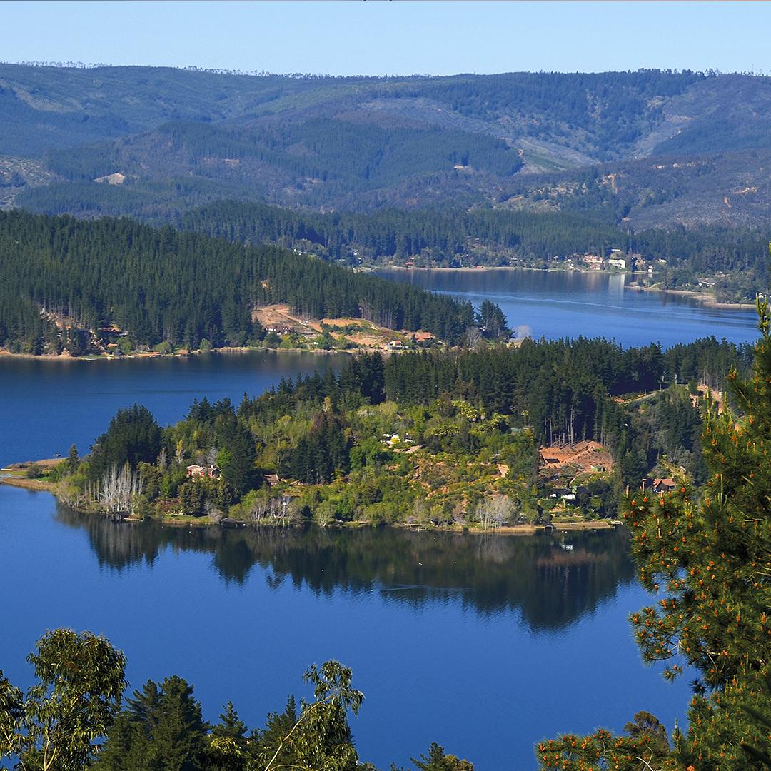 fotografía del lago desde altura